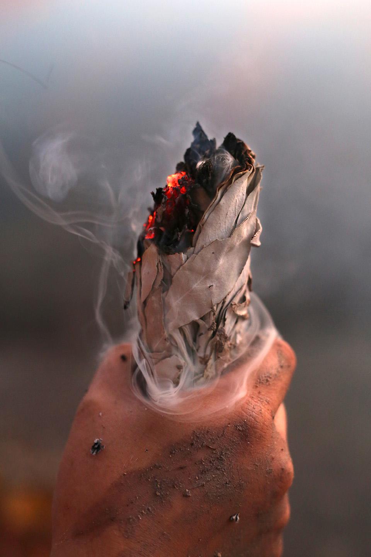 Sacred Sage By ElvaSalinas